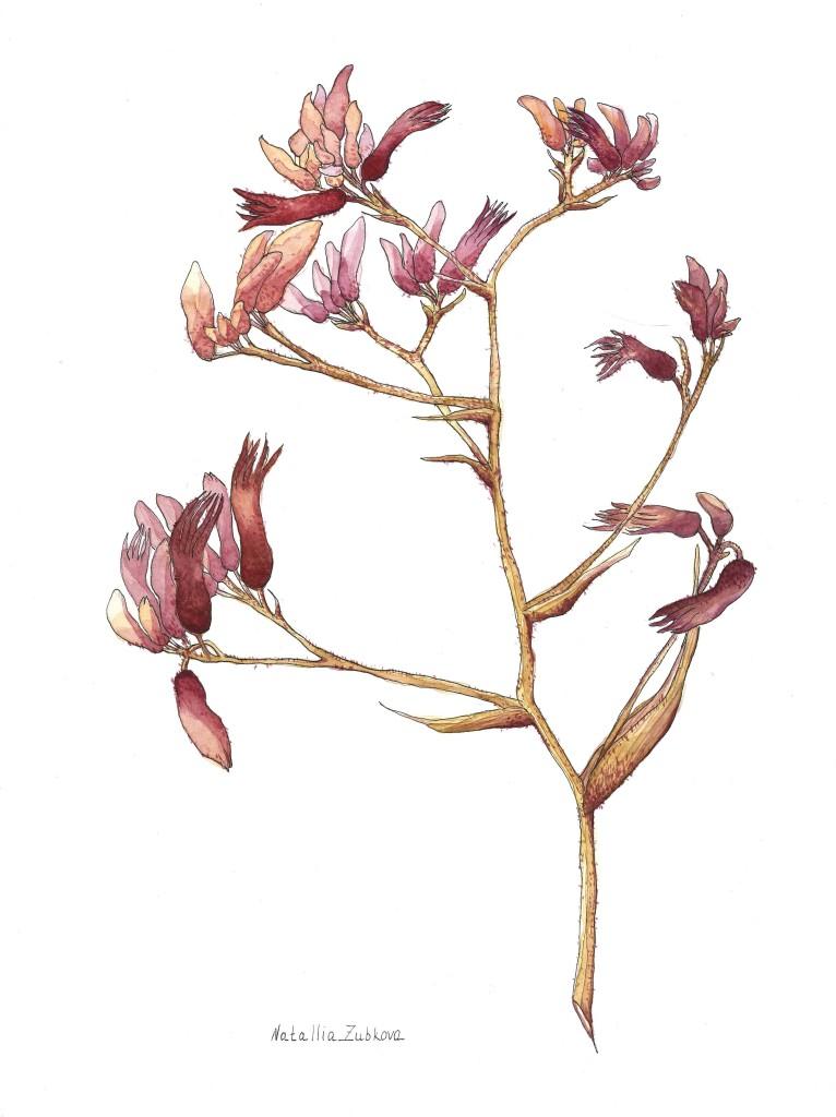 Watercolor paper 300g/m ,  watercolor, 42x29cm, 2017